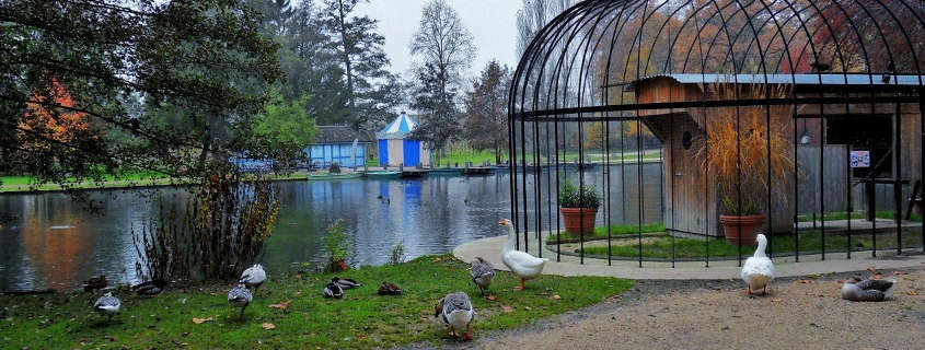 Beaune Parc Bouzaise