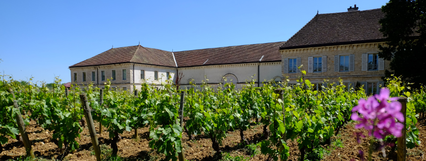 Domaine Famille Picard