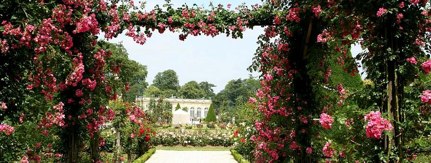 Jardin de l'arquebuse Dijon, jardin des sciences Dijon