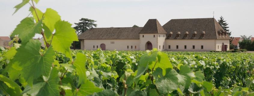 visiter-dijon-chateau-de-marsannay