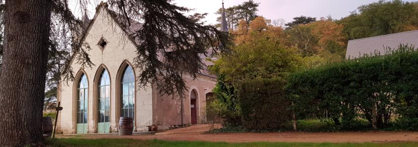 Château de Coulaine, Château de Coulaine Beaumont-en-Véron, domaine chinon, dégustation vin chinon, vin bio chinon, domaine bio chinon
