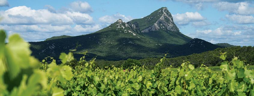 Pic Saint Loup mountain France