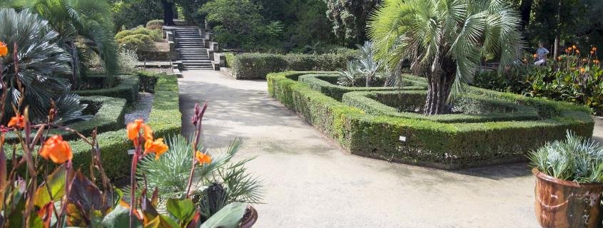 Botanical garden Montpellier France, jardin des plantes montpellier