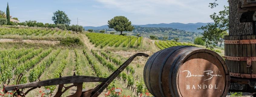 Domaines Bunan - route des vins de Bandol