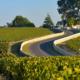 route des vins du médoc, route des vins de bordeaux, visite route des vins médoc, visite domaines médoc