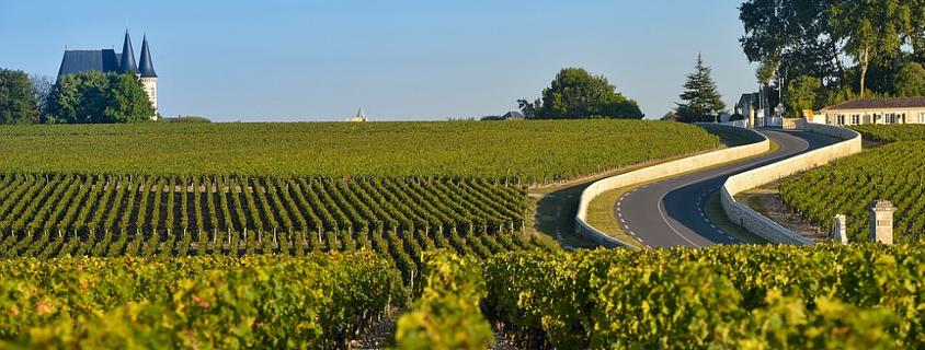 route des vins du médoc, route des vins de bordeaux, visite route des vins médoc