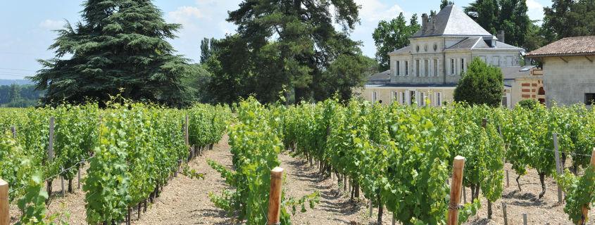 route des vins des graves et de sauternes, chateau haut nouchet pessac leognan