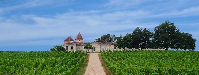 chateau rabaud promis sauternes, wine tasting
