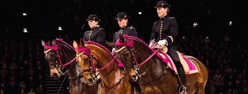 horsemen of cadre noir saumur, national school of horse riding saumur, saumur horses