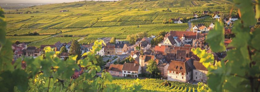 riquewihr route des vins, plus beau village route des vins d'alsace