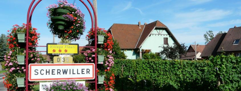 Route des vins d'Alsace, Alsace, Visiter l'Alsace, Que faire en Alsace, Vignoble Alsace, Scherwiller