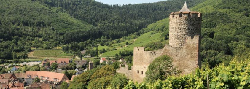 chateau de kaysersberg route des vins alsace