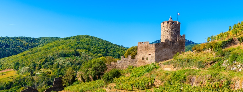 Château Kaysersberg Route vins Alsace