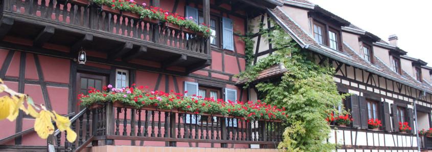 visite domaine marlenheim, visite domaine route des vins d'alsace nord, domaine pfister