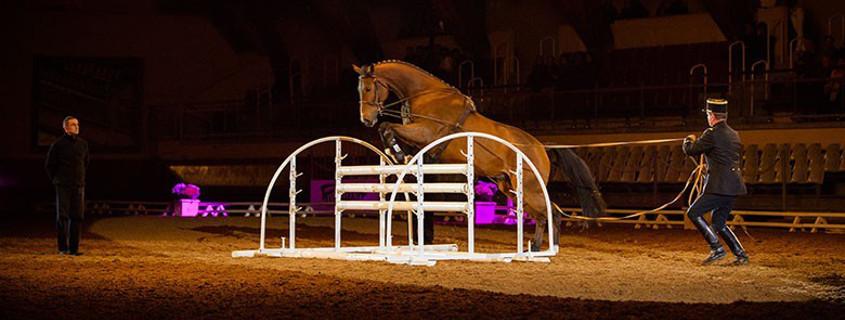 horses gala saumur, cadre noir show saumur, horses show saumur, horses spectacle saumur