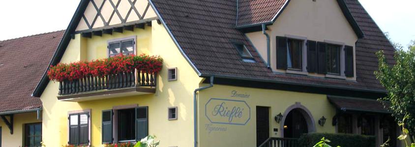 Domaine Rieflé Landmann, visit winery alsace, wine tasting alsace, wine tasting alsace