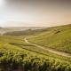 route des vins chablis, route bourgogne chablis, circuit route des vins auxerre chablis