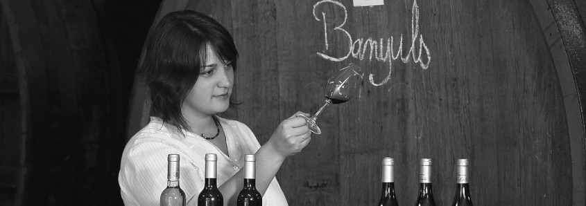 Domaine Madeloc, Domaine Madeloc banyuls, wine tasting collioure, visit winery collioure, south of france wine, wine tasting banyuls