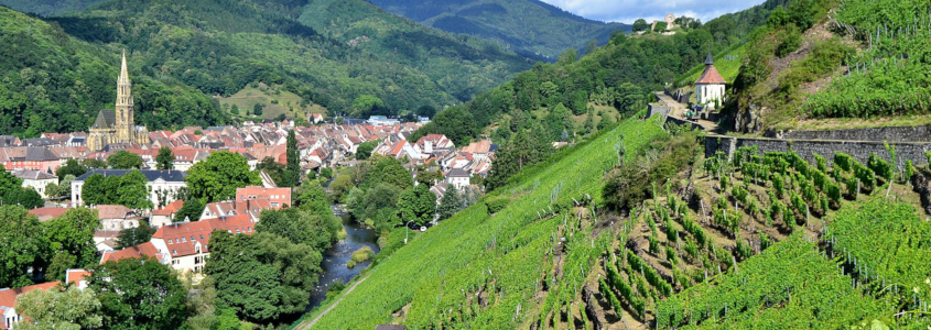 thann, wine route stage, alsace wine route village