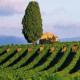 Route des vins de Béziers à Sète, route des vins béziers, route des vins Sète, route des vins st chinian, route des vins faugères, route des vins languedoc