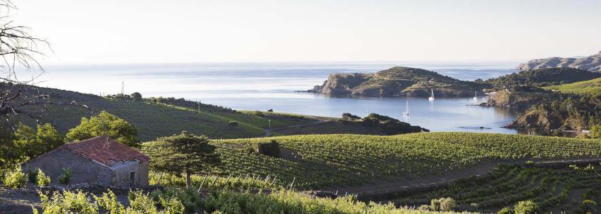route des vins du roussillon, route des vins en roussillon, carte route des vins roussillon, vin roussillon, route des vins