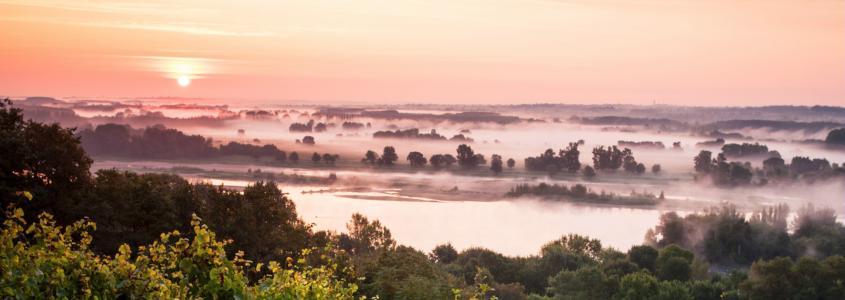 Route des vins de Loire, route des vins vallée de la loire, route des vins anjou, route des vins touraine, route des vins sancerre, route des vins bourges, route des vins centre val de loire, route des vins saumur, route des vins angers, route des vins tours, route des vins chinon