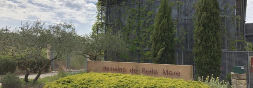 Domaine de Belle Mare, Domaine de Belle Mare Mèze, dégustation Domaine de Belle Mare, visite étang de thau, dégustation vin mèze, dégustation vins étang de thau, dégustation picpoul de pinet