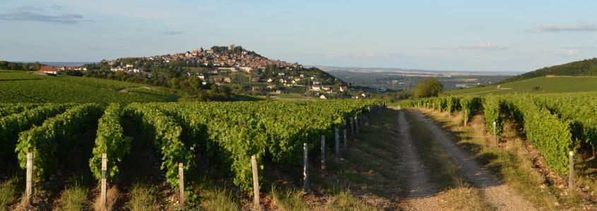 Route des vins en Centre Val de Loire, Route des vins de Loire, domaines viticoles Route des vins en Centre Val de Loire, dégustation vin Route des vins en Centre Val de Loire