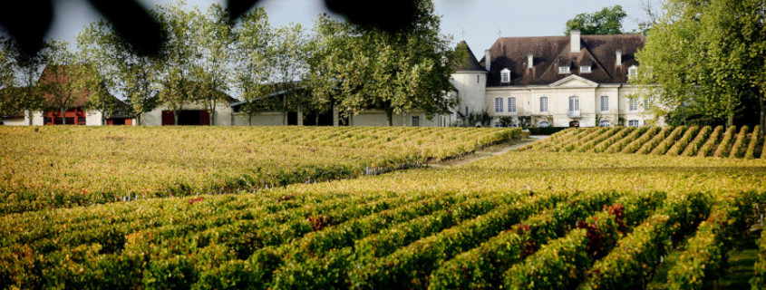 Guide des vins de Bordeaux
