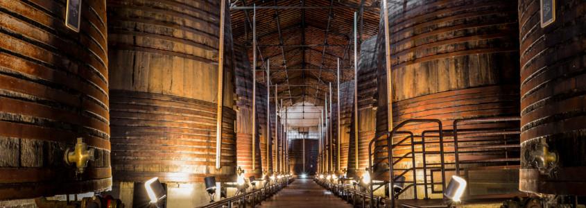 Histoire des vins du Languedoc Roussillon