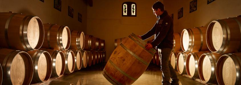 Histoire des vins de Bordeaux, guide des vins de bordeaux
