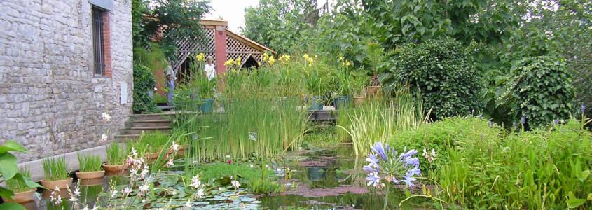 Jardin des Paradis, Cordes sur Ciel, visiter Cordes sur Ciel, Cordes sur Ciel Tarn, village Cordes sur Ciel