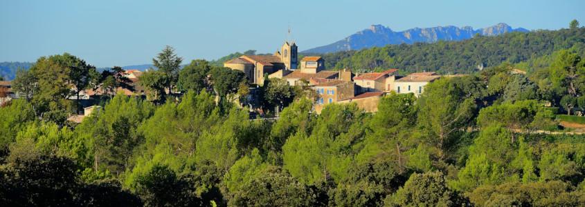 Vignoble du Languedoc Roussillon