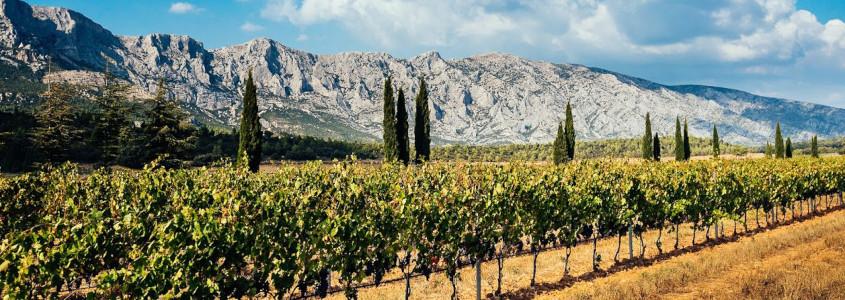 Terroir de Provence