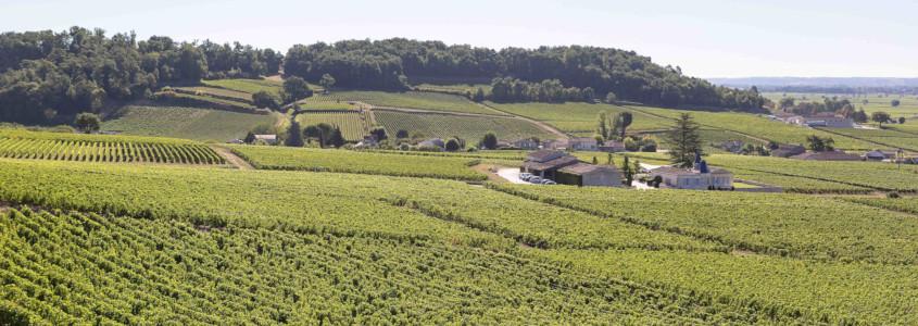 Terroir Bordelais, guide des vins de bordeaux, sols bordelais