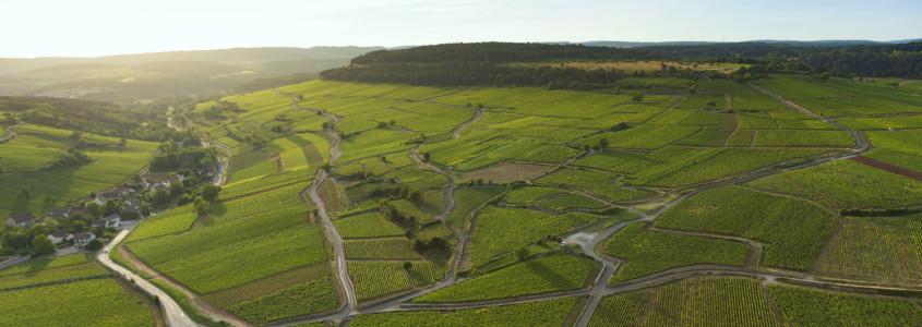 Vin de Bourgogne : Terroir, terroir bourguignons, terroir vins bourgogne, sols bourgogne, climats de bourgogne