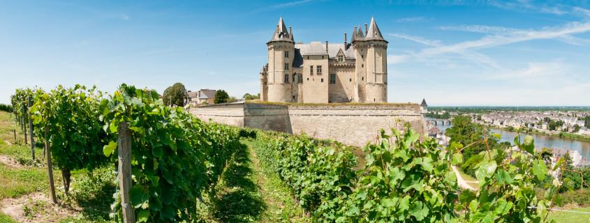 Vignoble de Loire