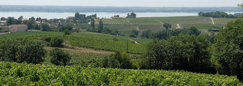 Blaye, Vignoble Bordeaux, Visiter Blaye