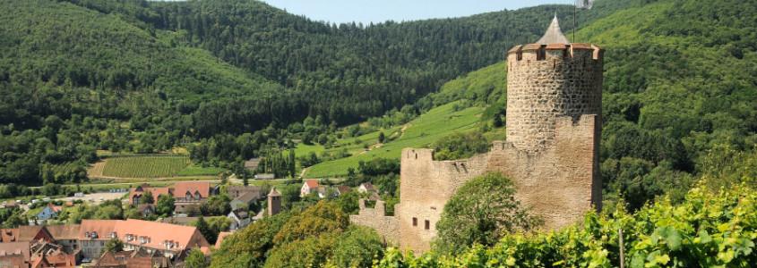 Le Château de Kaysersbeg, Kaysersberg, Visiter Kaysersberg, Alsace, Visiter l'Alsace, Route des vins Alsace, Vignoble Alsace, Que faire à Kaysersberg