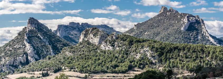 Terroir des vins de la vallée du Rhône