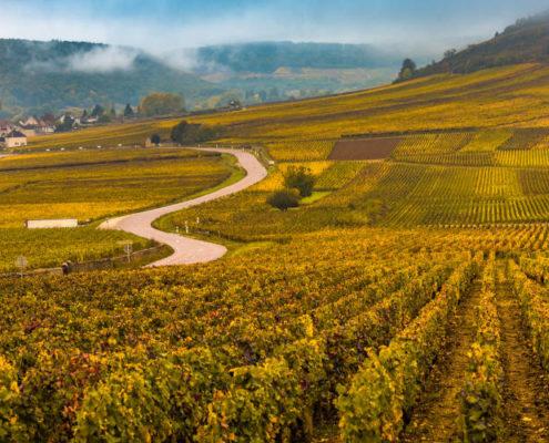 Visiter Bourgogne
