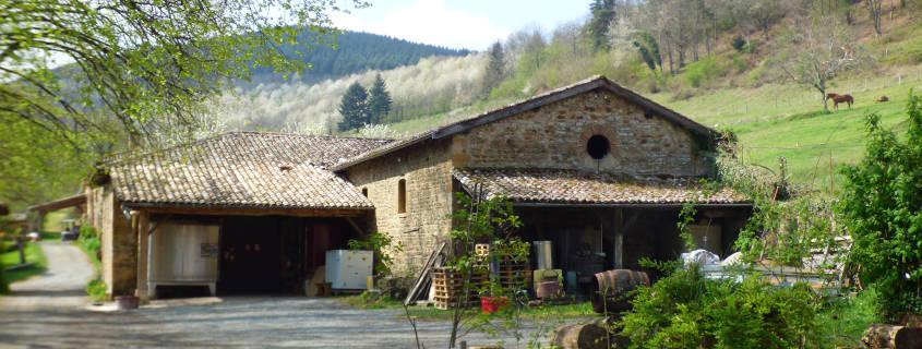 domaine emmanuel fellot, beaujolais, vin, vignoble, vigneron