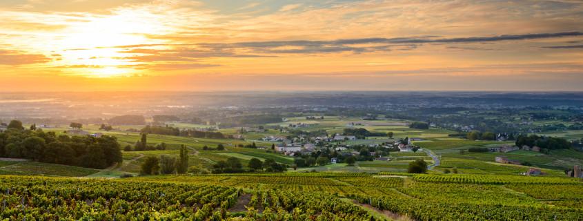 vignoble Beaujolais