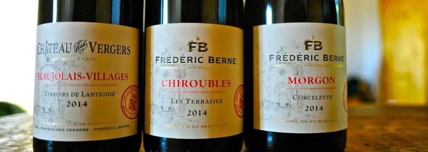 vins cepage beaujolais