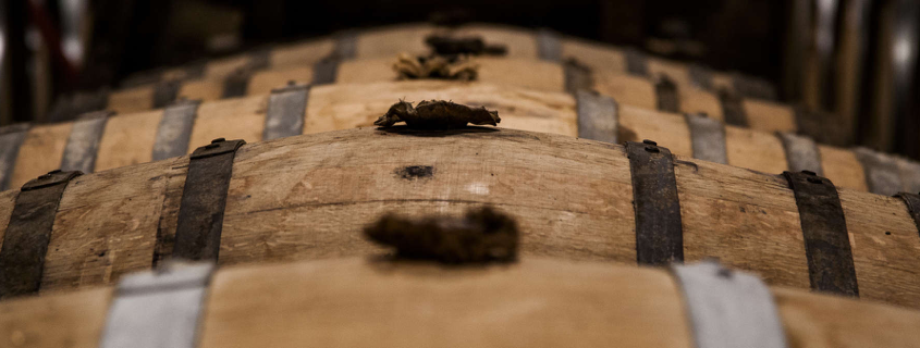 Barrique cognac