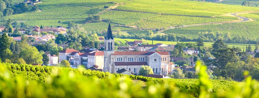 paysage-vignoble-beaujolais
