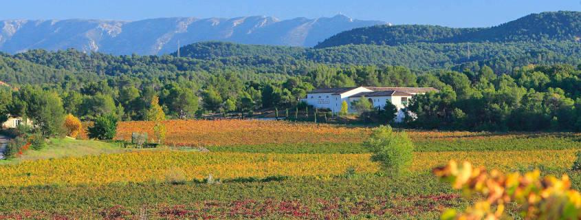 Château Paradis, Puy Sainte Réparade