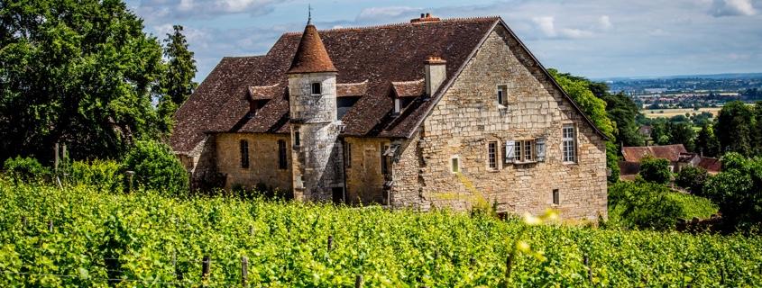 Domaine Cote de Nuits Bourgogne, visite, dégustation