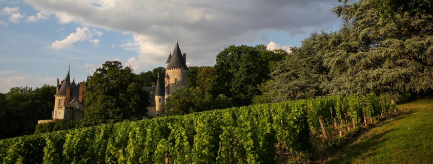 vignoble, vins, centre val de loire